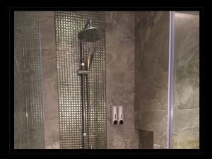 shower room tpe